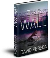 The Wall by David Pereda